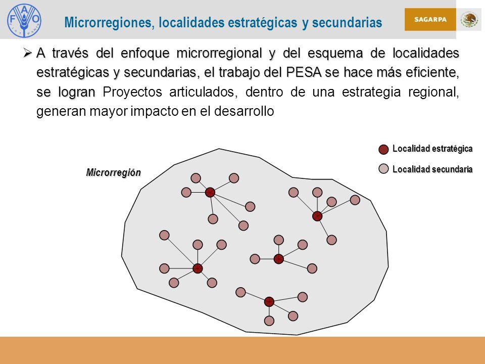 Microrregiones, localidades estratégicas y secundarias
