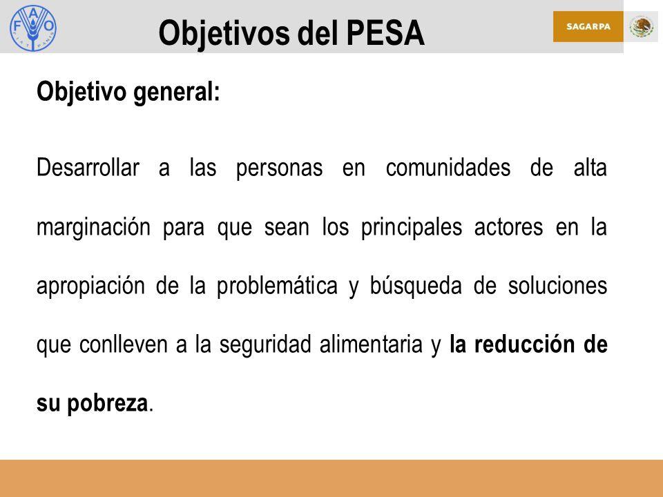 Objetivos del PESA Objetivo general:
