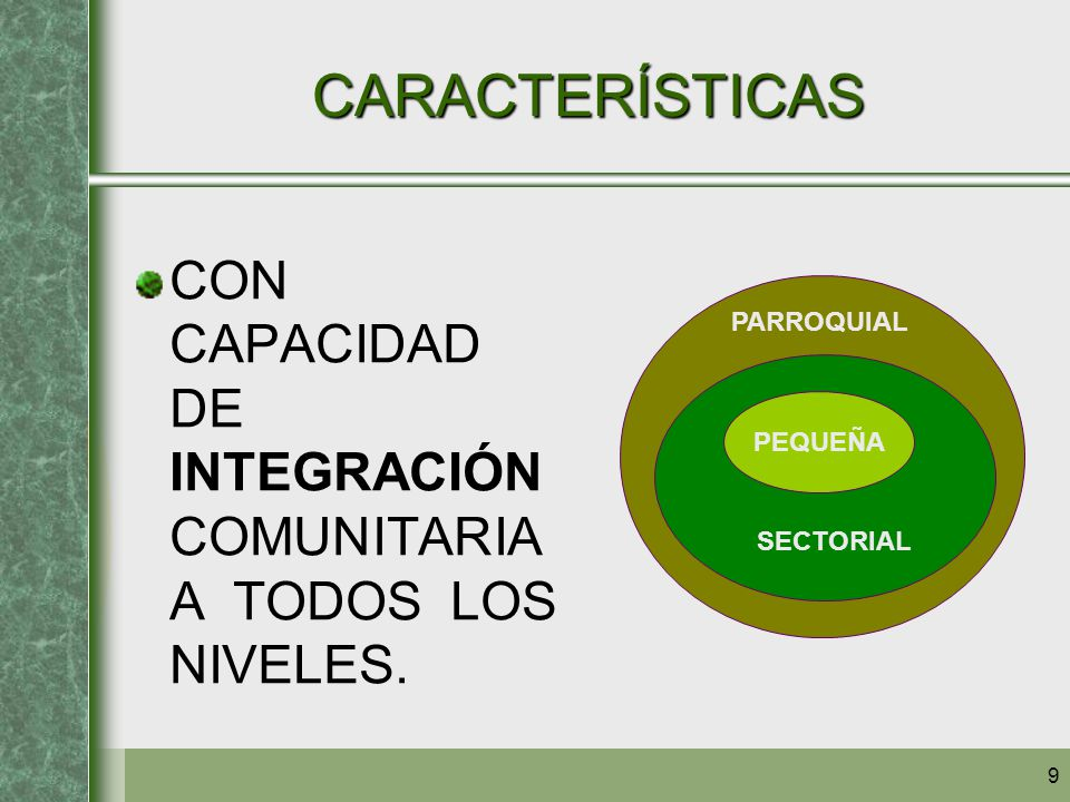 CARACTERÍSTICAS CON CAPACIDAD DE INTEGRACIÓN COMUNITARIA A TODOS LOS NIVELES. PEQUEÑA. SECTORIAL.
