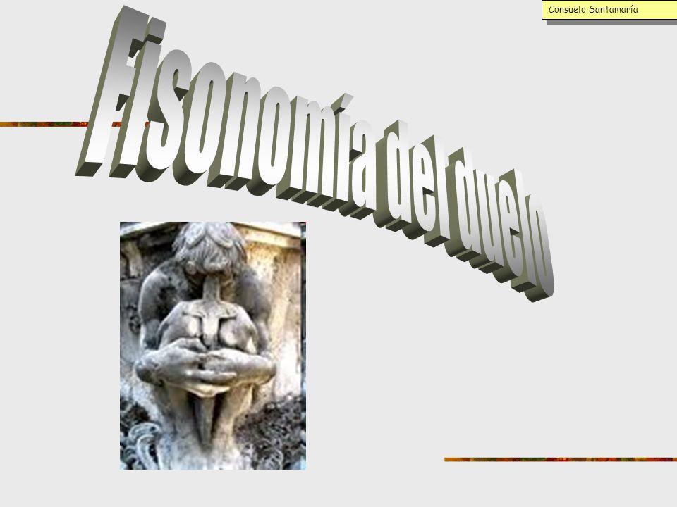Consuelo Santamaría Fisonomía del duelo