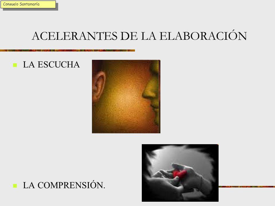 ACELERANTES DE LA ELABORACIÓN