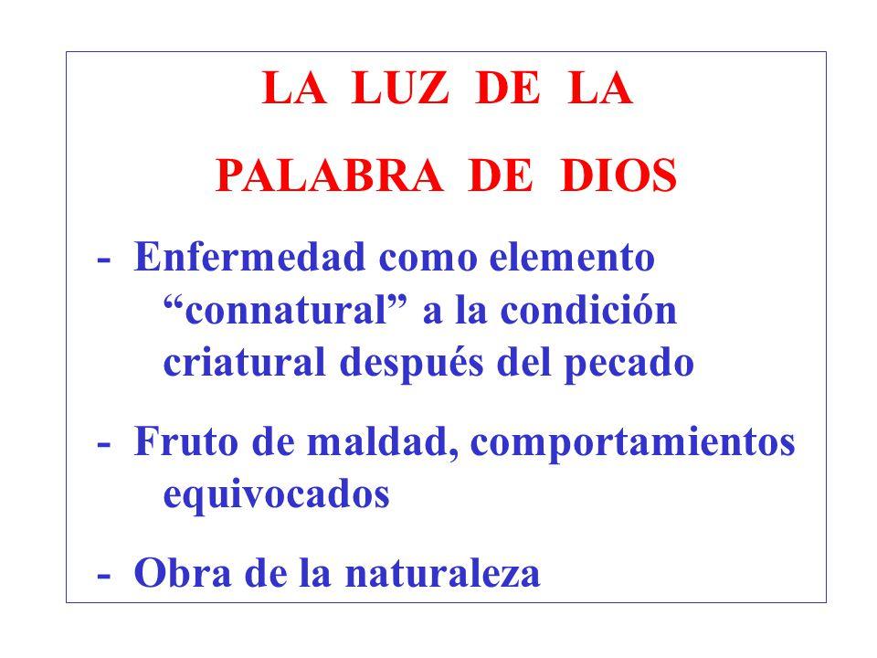 LA LUZ DE LA PALABRA DE DIOS
