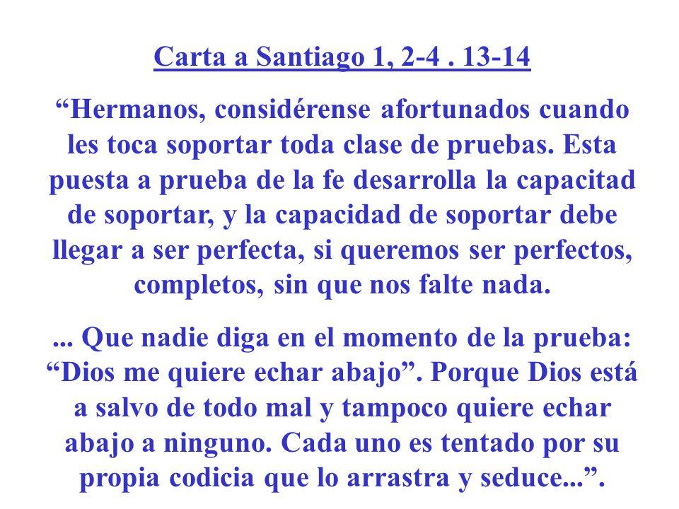 Carta a Santiago 1, 2-4 . 13-14