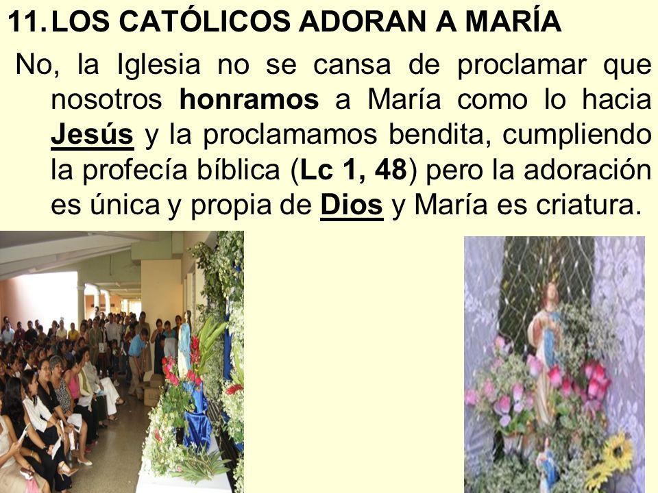 LOS CATÓLICOS ADORAN A MARÍA