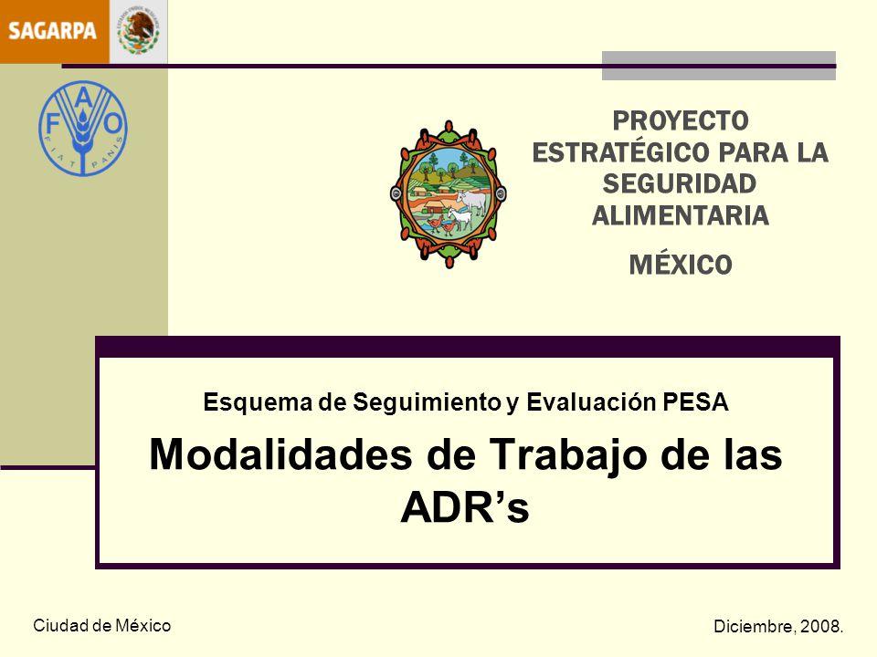 Modalidades de Trabajo de las ADR's