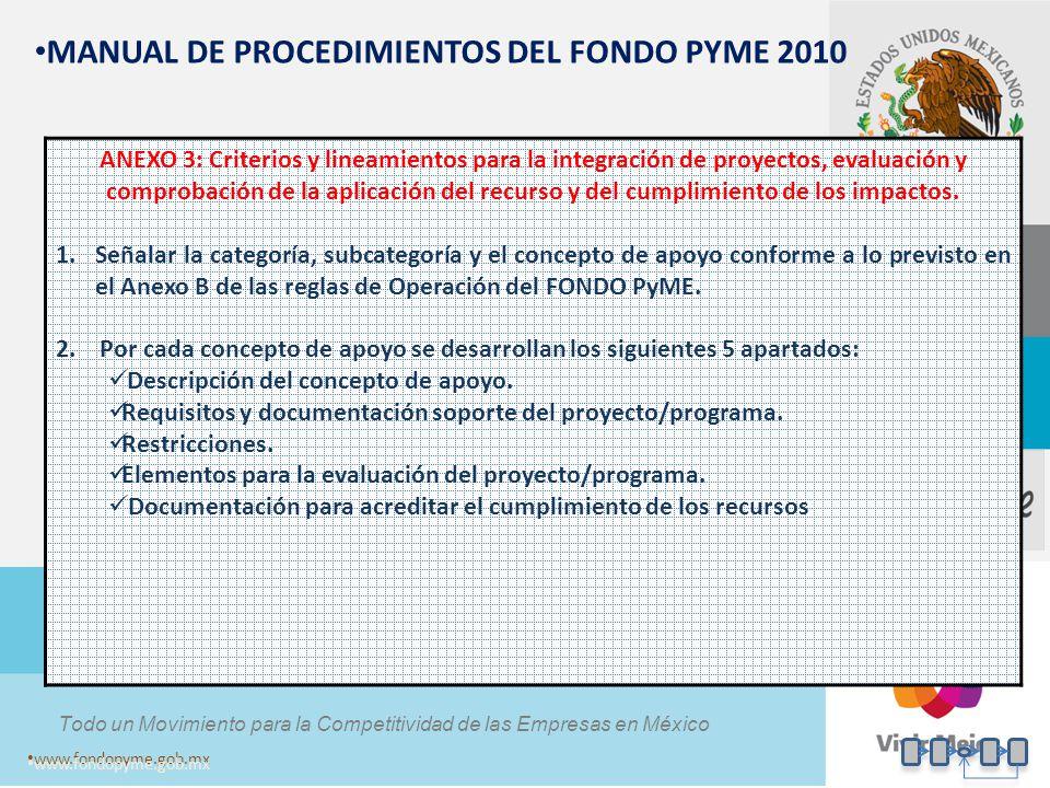MANUAL DE PROCEDIMIENTOS DEL FONDO PYME 2010