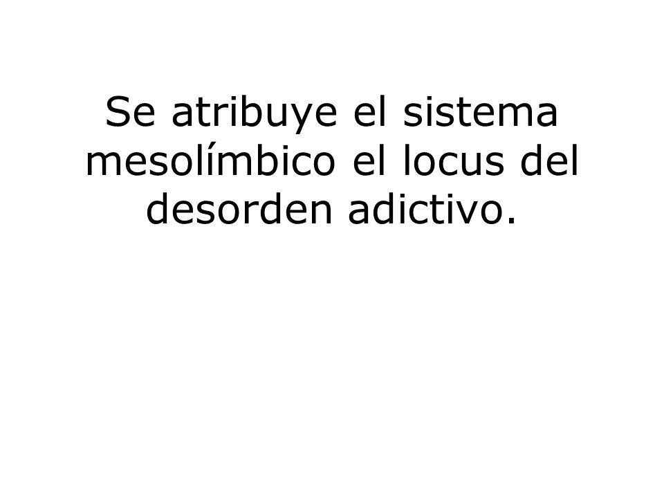 Se atribuye el sistema mesolímbico el locus del desorden adictivo.