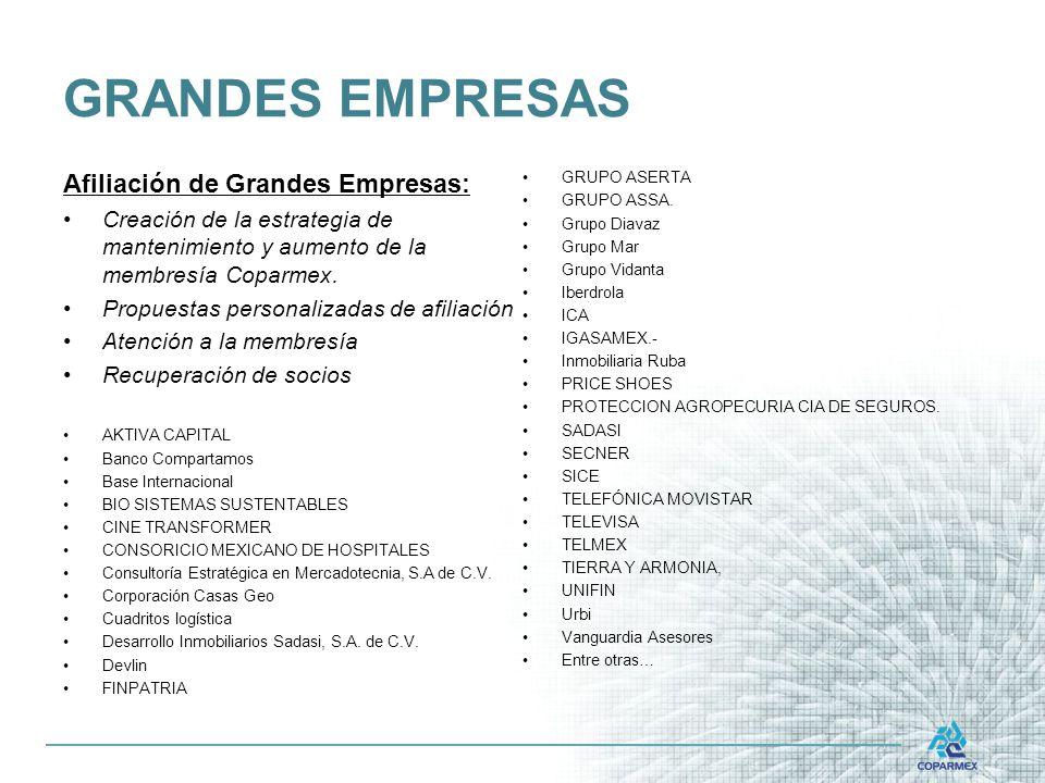 GRANDES EMPRESAS Afiliación de Grandes Empresas: