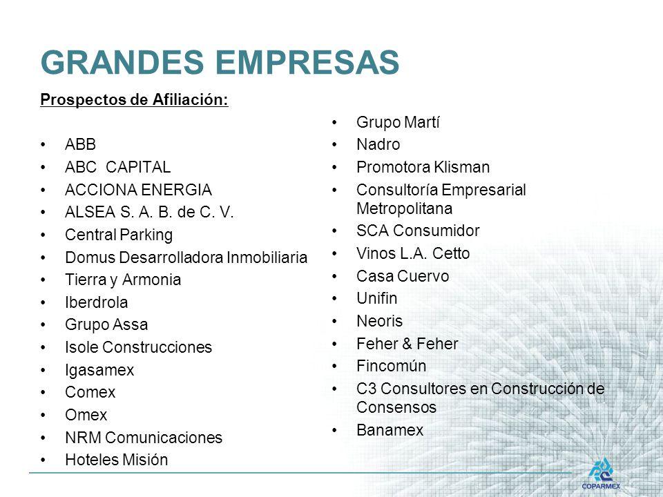 GRANDES EMPRESAS Prospectos de Afiliación: Grupo Martí ABB Nadro
