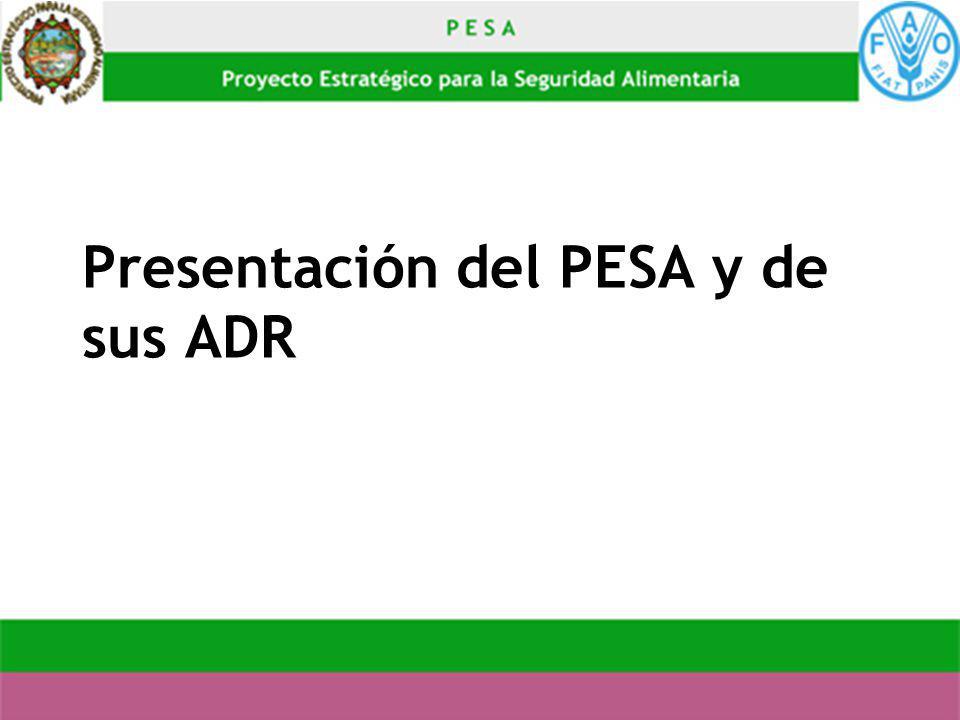 Presentación del PESA y de sus ADR