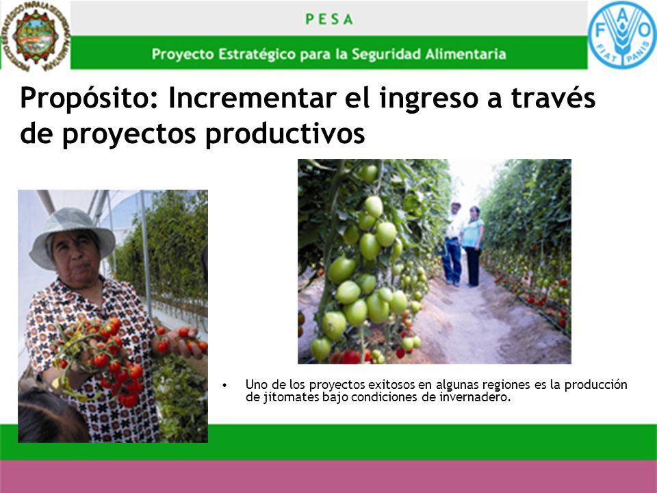 Propósito: Incrementar el ingreso a través de proyectos productivos