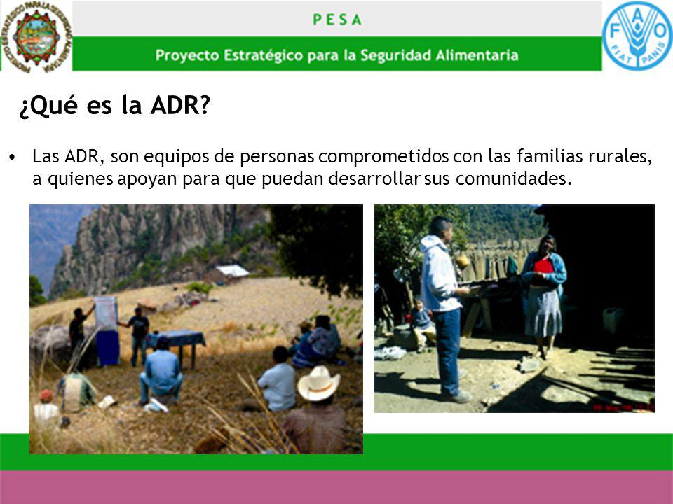 ¿Qué es la ADR