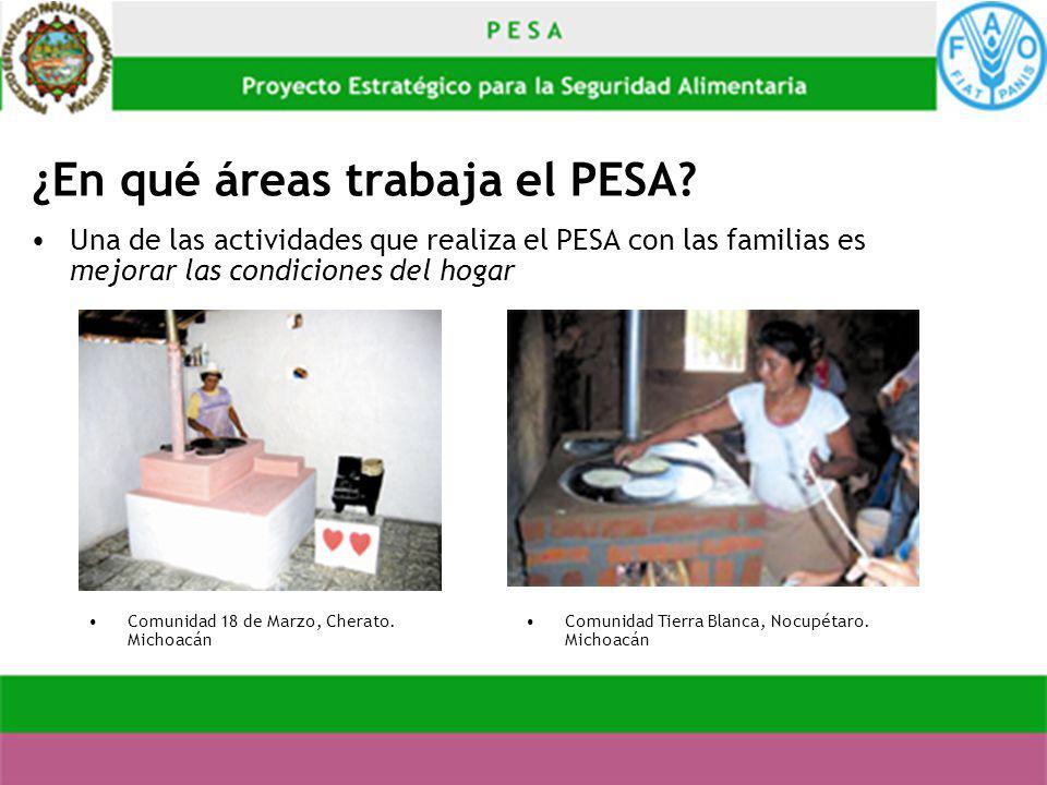 ¿En qué áreas trabaja el PESA