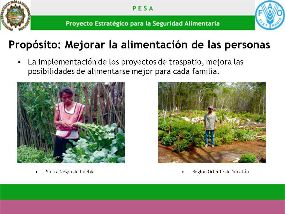 Propósito: Mejorar la alimentación de las personas