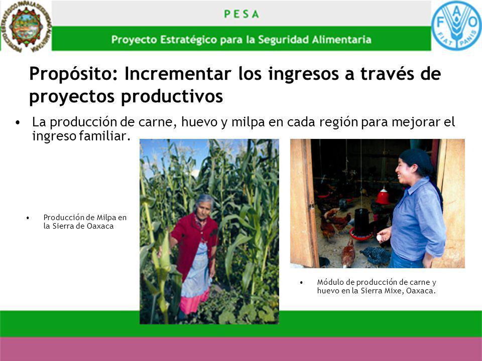 Propósito: Incrementar los ingresos a través de proyectos productivos