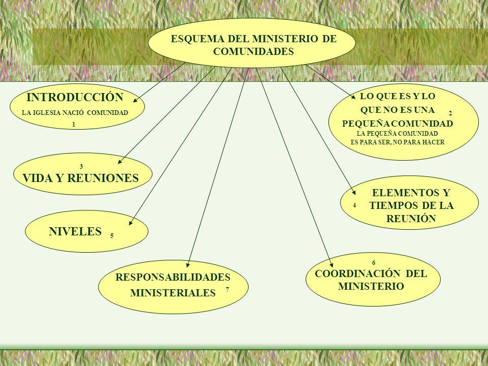 INTRODUCCIÓN VIDA Y REUNIONES NIVELES