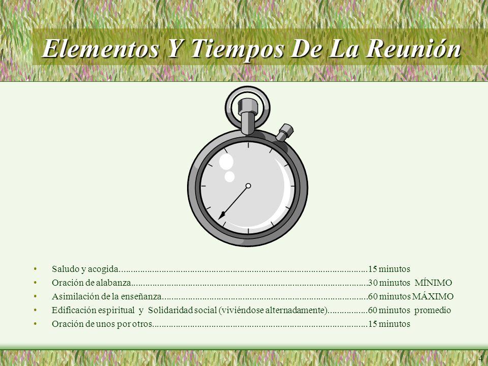 Elementos Y Tiempos De La Reunión