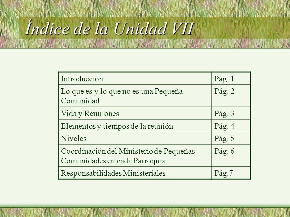 Índice de la Unidad VII Introducción Pág. 1