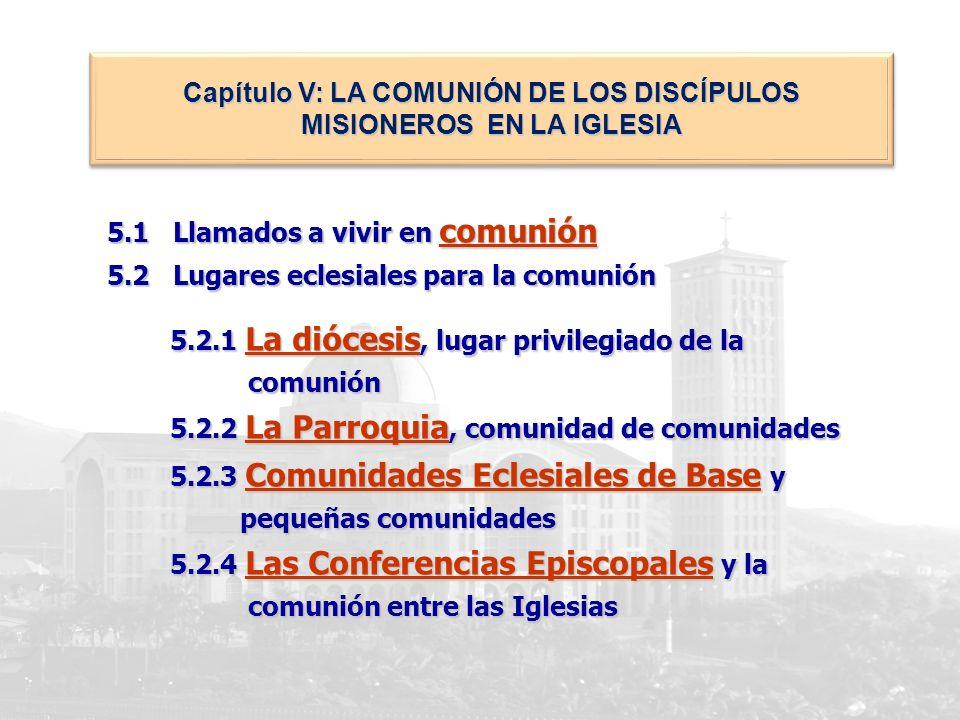 Capítulo V: LA COMUNIÓN DE LOS DISCÍPULOS MISIONEROS EN LA IGLESIA