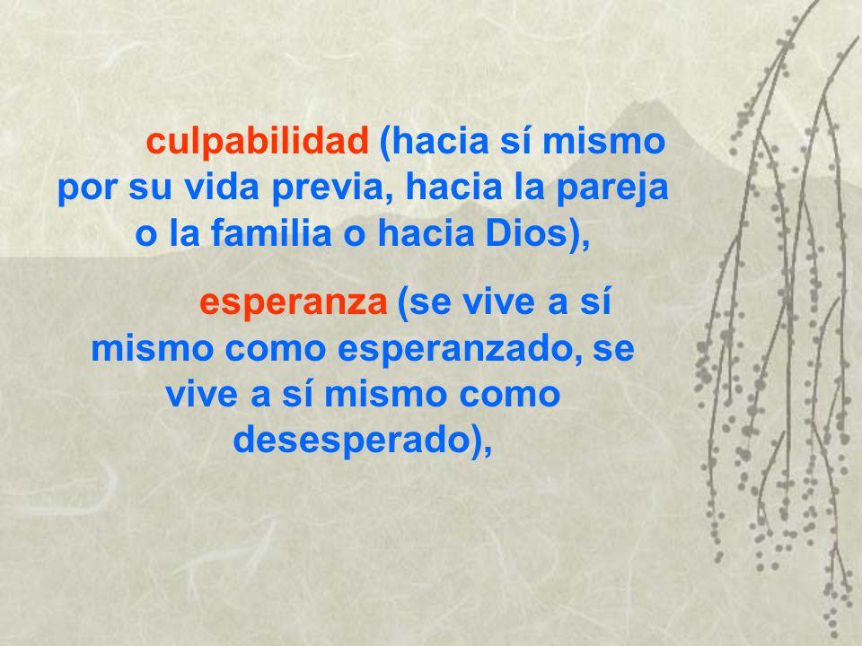culpabilidad (hacia sí mismo por su vida previa, hacia la pareja o la familia o hacia Dios),