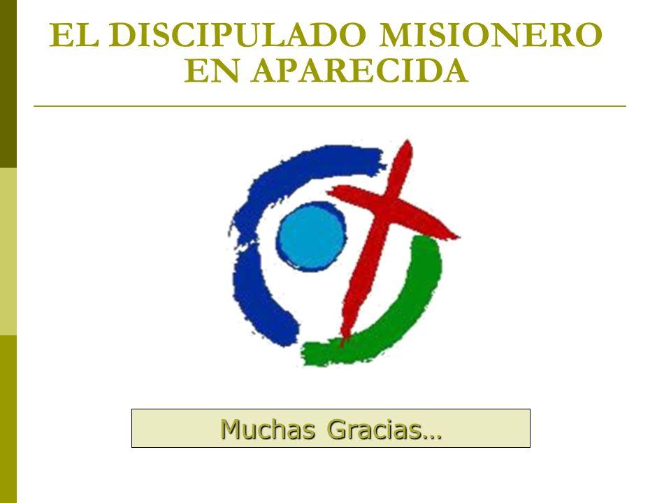 EL DISCIPULADO MISIONERO EN APARECIDA