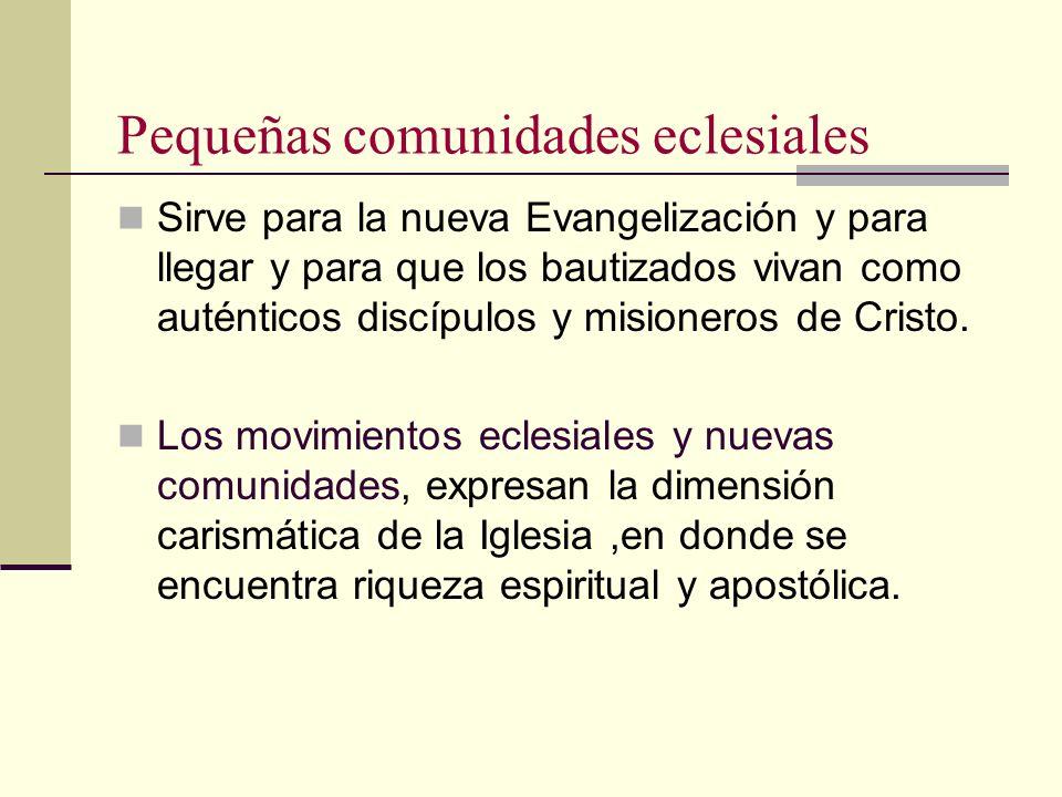 Pequeñas comunidades eclesiales