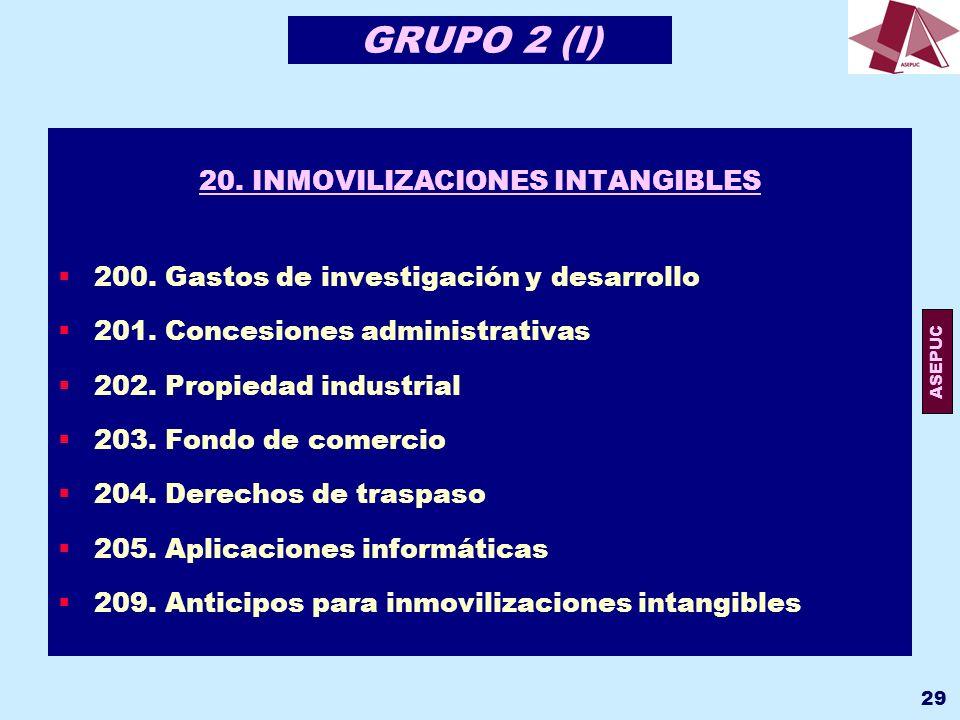 20. INMOVILIZACIONES INTANGIBLES