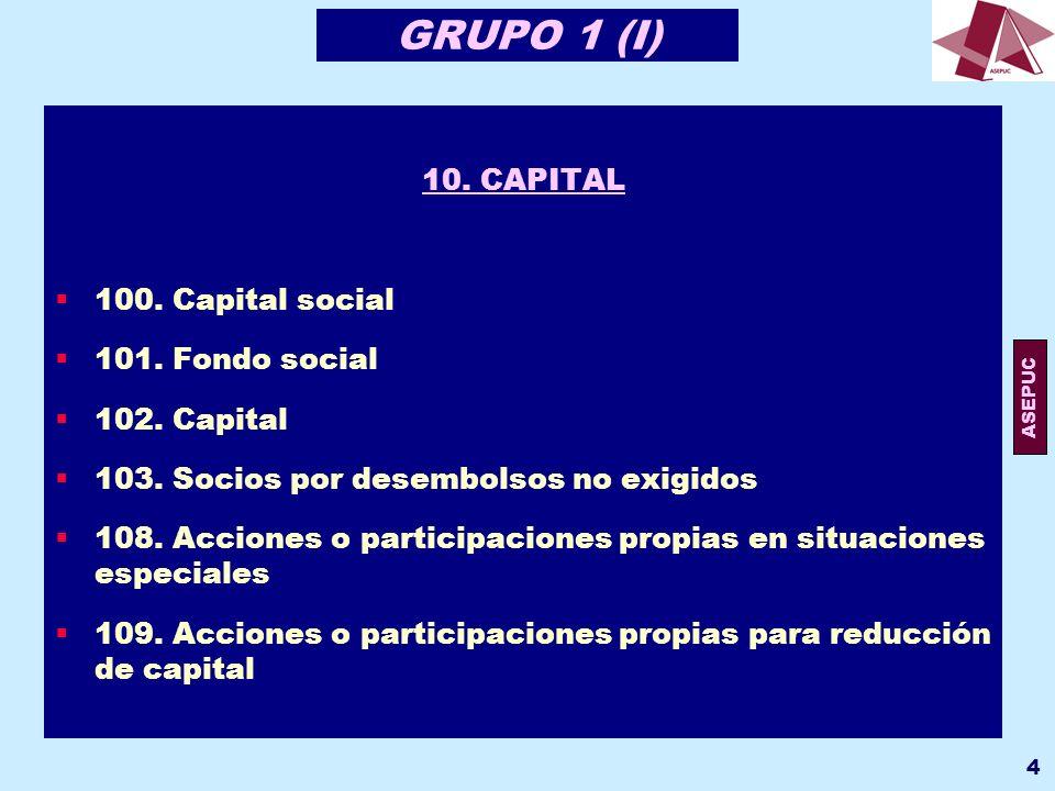 GRUPO 1 (I) 10. CAPITAL 100. Capital social 101. Fondo social