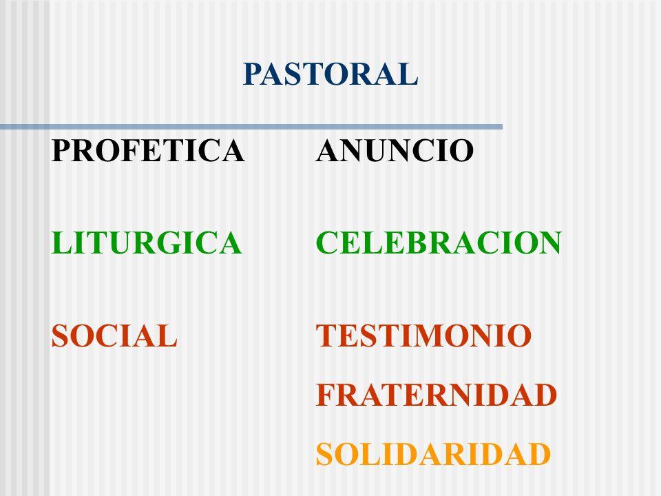 LITURGICA CELEBRACION SOCIAL TESTIMONIO