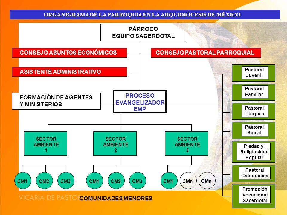 ORGANIGRAMA DE LA PARROQUIA EN LA ARQUIDIÓCESIS DE MÉXICO