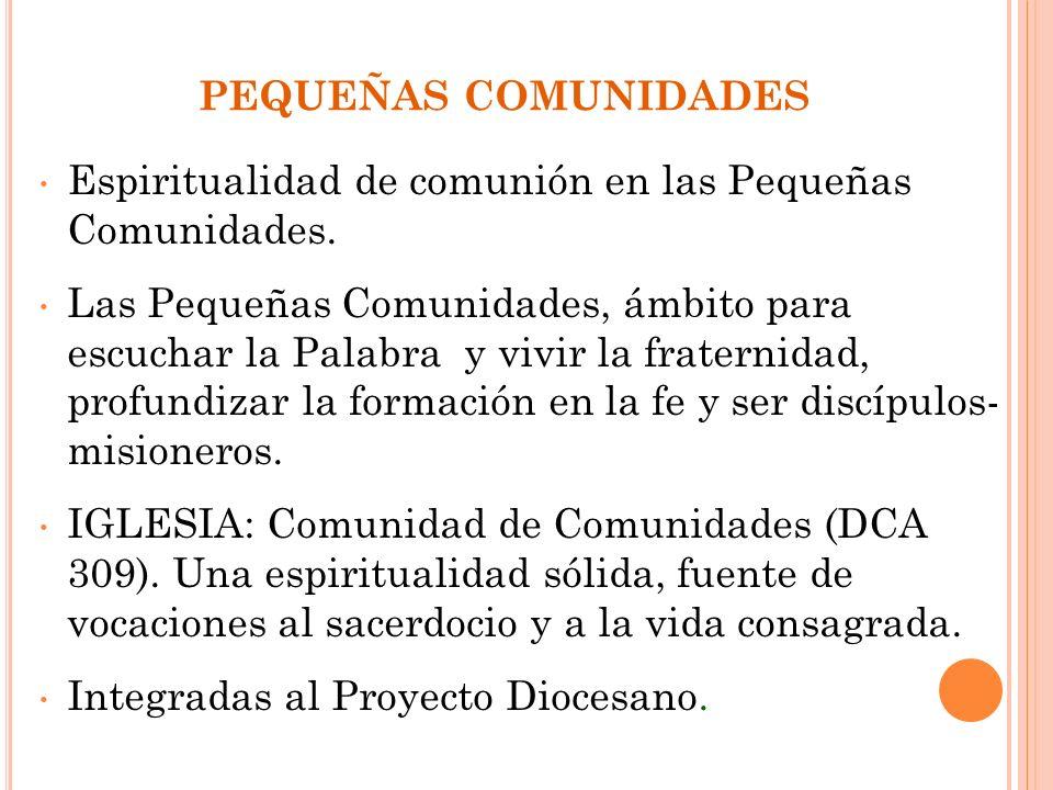 PEQUEÑAS COMUNIDADES Espiritualidad de comunión en las Pequeñas Comunidades.