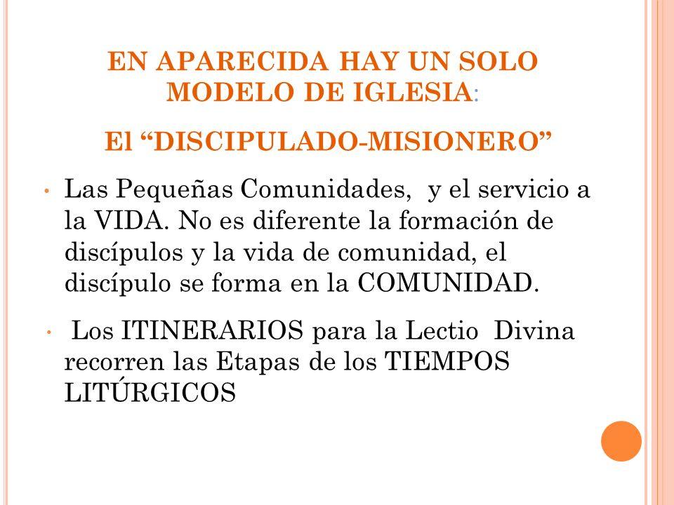 EN APARECIDA HAY UN SOLO MODELO DE IGLESIA: