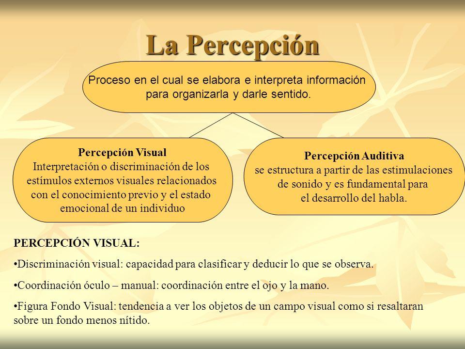 La Percepción Proceso en el cual se elabora e interpreta información