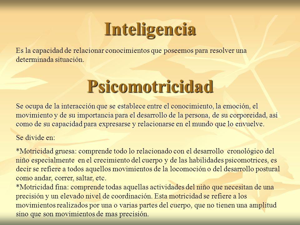 Inteligencia Psicomotricidad