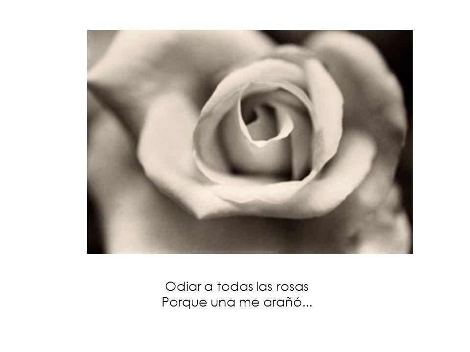 Odiar a todas las rosas Porque una me arañó...