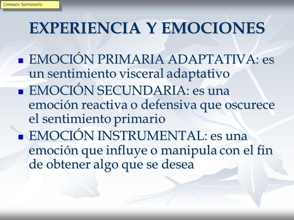 EXPERIENCIA Y EMOCIONES