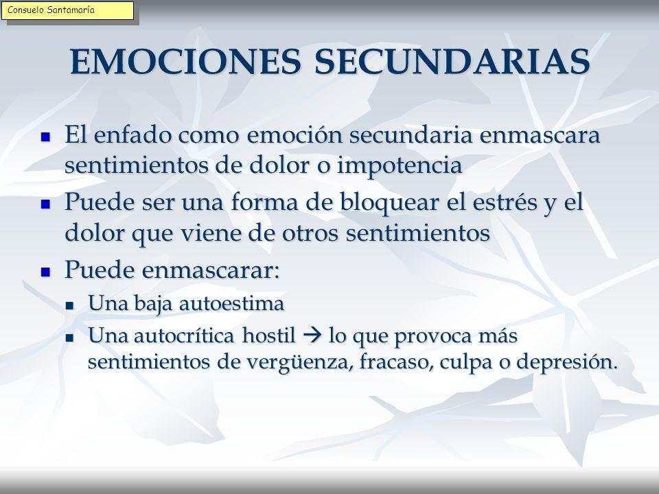 EMOCIONES SECUNDARIAS