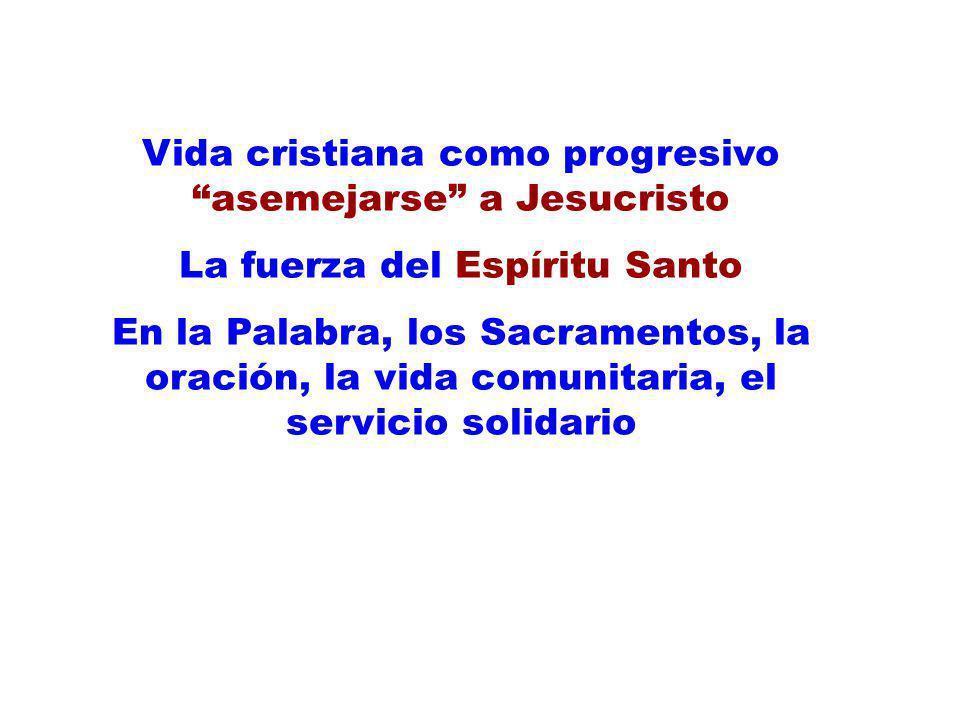 Vida cristiana como progresivo asemejarse a Jesucristo