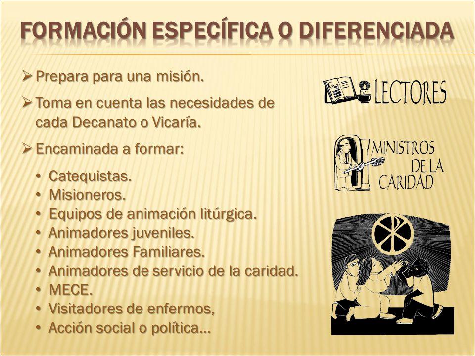 FORMACIÓN ESPECÍFICA O DIFERENCIADA