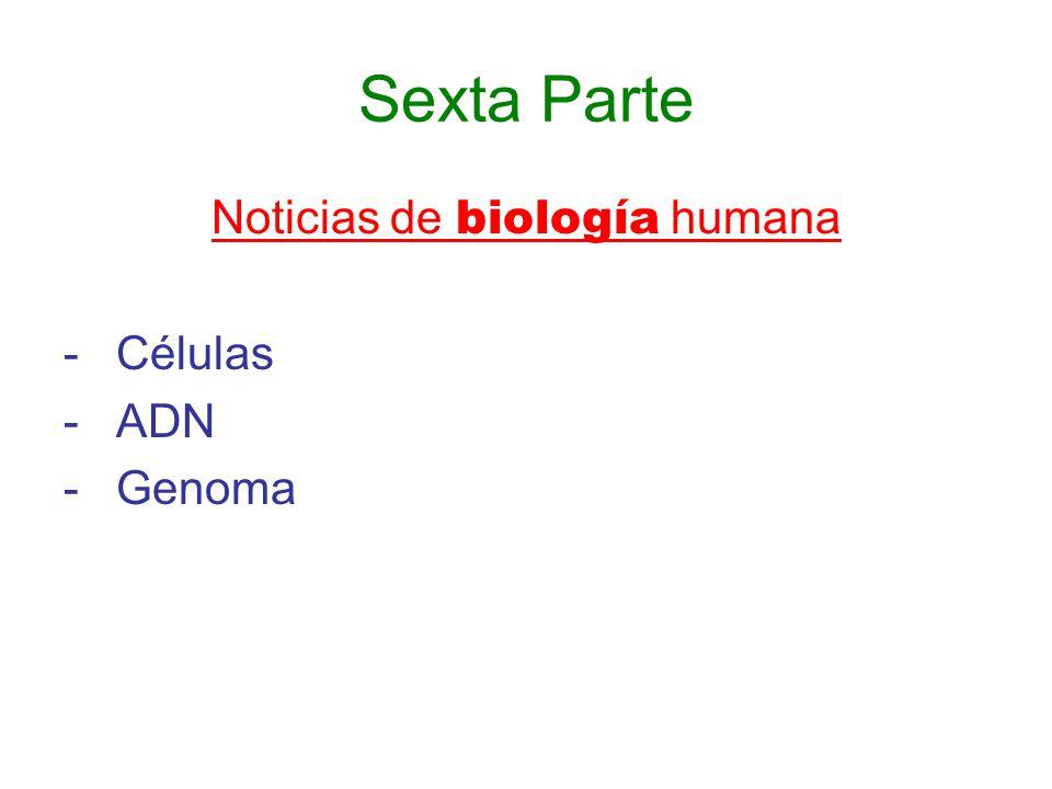 Noticias de biología humana