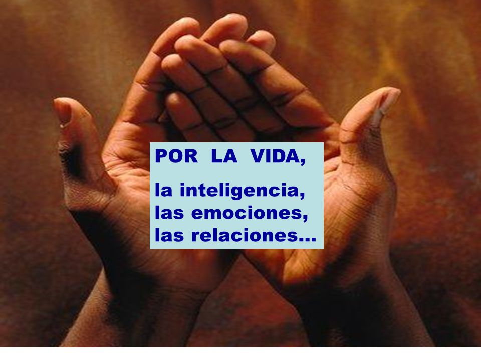 POR LA VIDA, la inteligencia, las emociones, las relaciones…