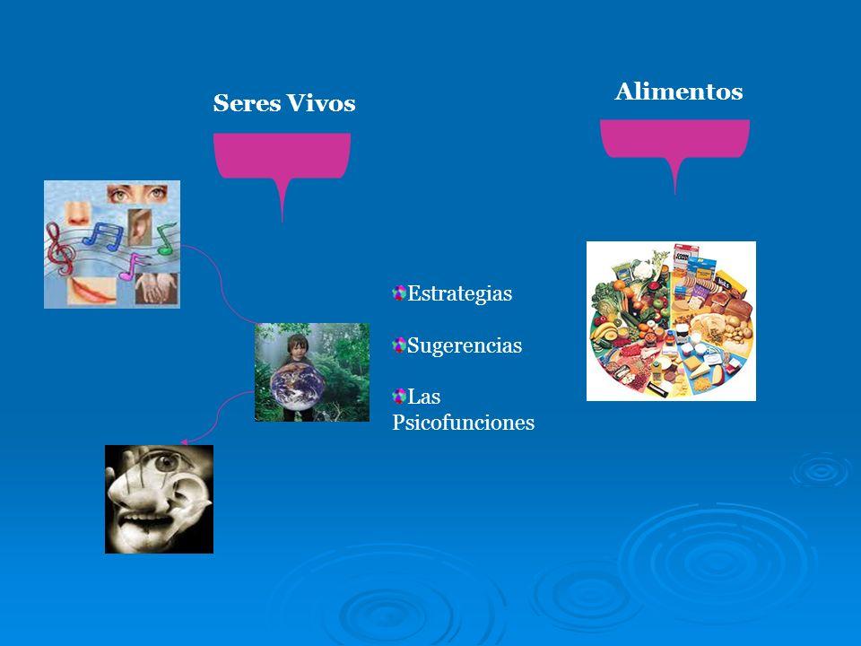 Seres Vivos Alimentos Estrategias Sugerencias Las Psicofunciones