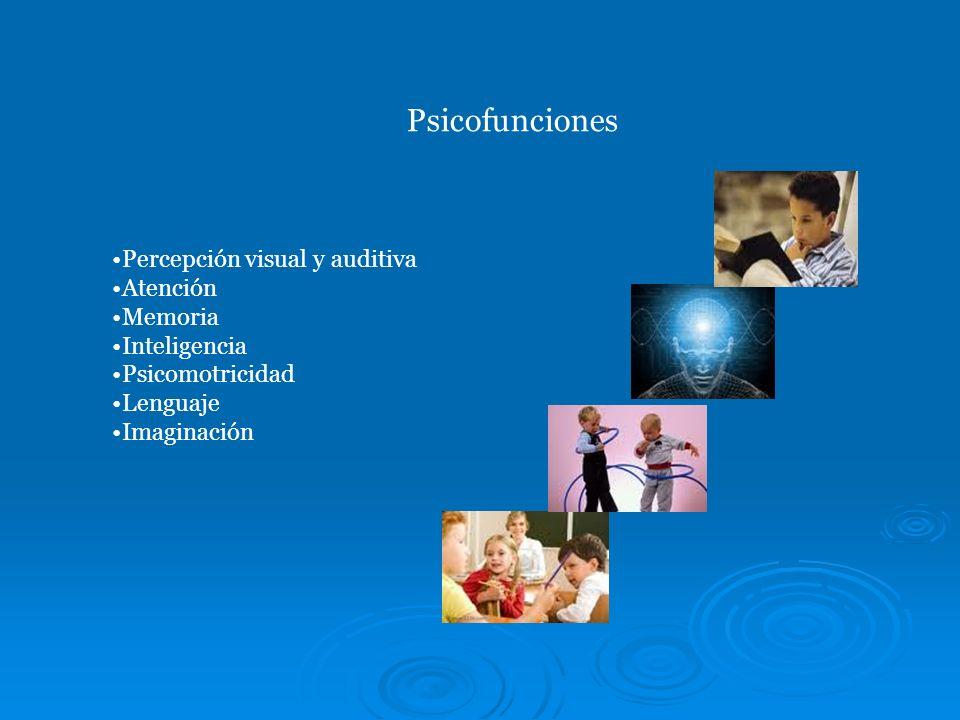 Psicofunciones Percepción visual y auditiva Atención Memoria