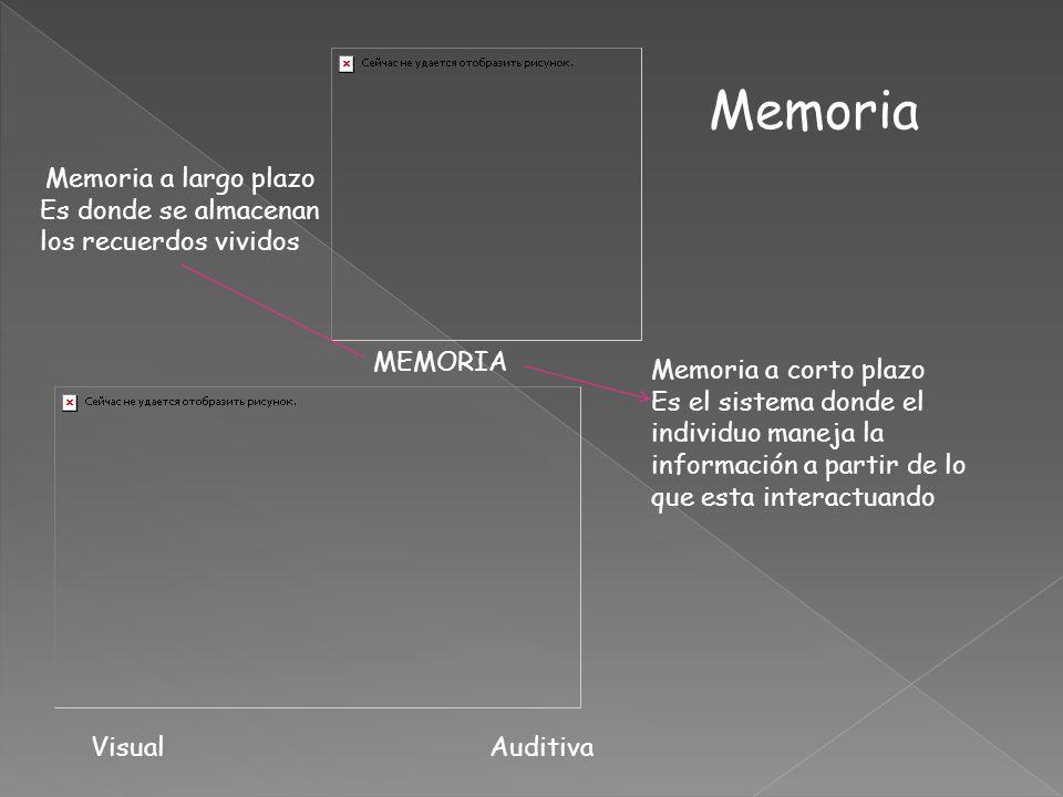 Memoria Memoria a largo plazo