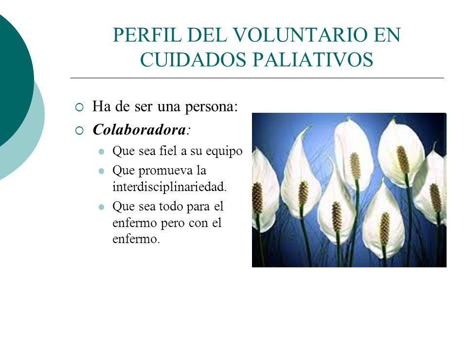 PERFIL DEL VOLUNTARIO EN CUIDADOS PALIATIVOS