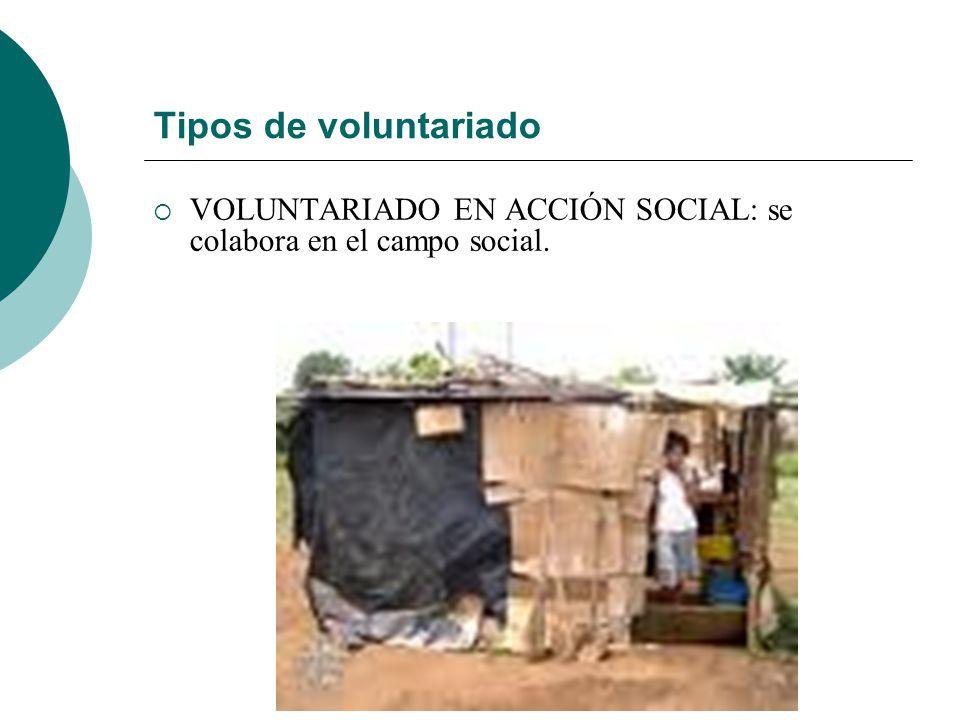 Tipos de voluntariado VOLUNTARIADO EN ACCIÓN SOCIAL: se colabora en el campo social.