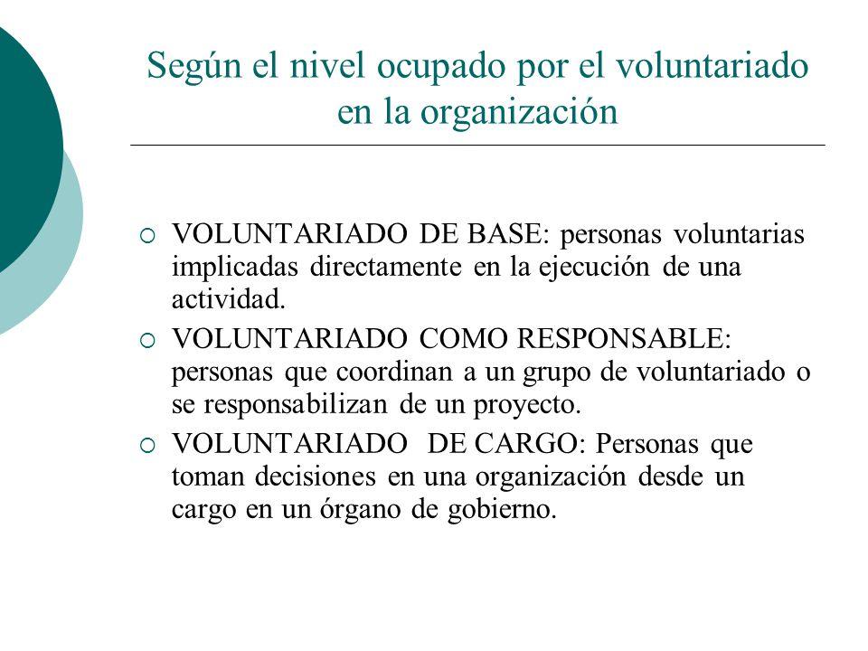 Según el nivel ocupado por el voluntariado en la organización