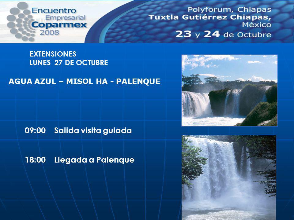 09:00 Salida visita guiada 18:00 Llegada a Palenque EXTENSIONES