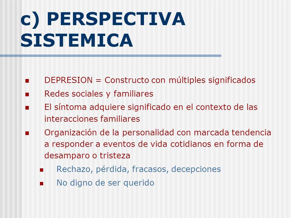 c) PERSPECTIVA SISTEMICA