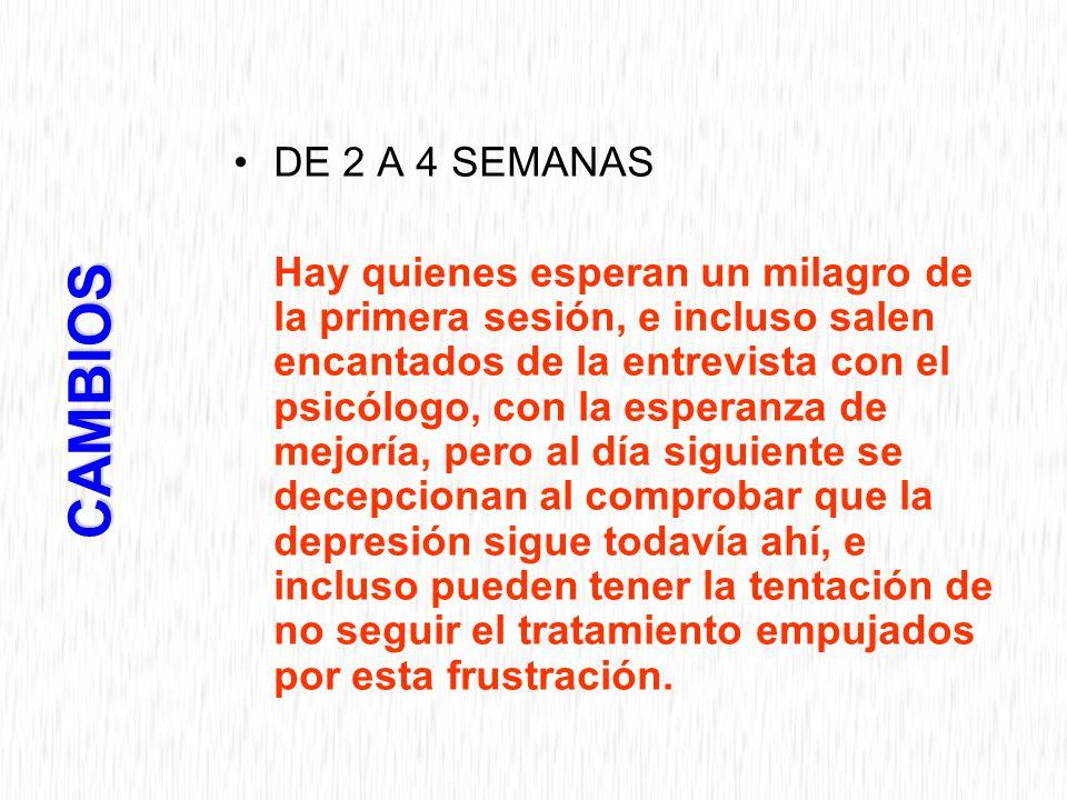 DE 2 A 4 SEMANAS